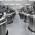 NovAseptic®-Kompatibilität: Druckmittlersysteme mit TRI-CLAMP®-Anschluss
